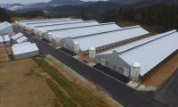 阿賀第3農場新築工事